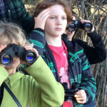 Galiano Exploratory: Bird Watching (Shannon Johnston)