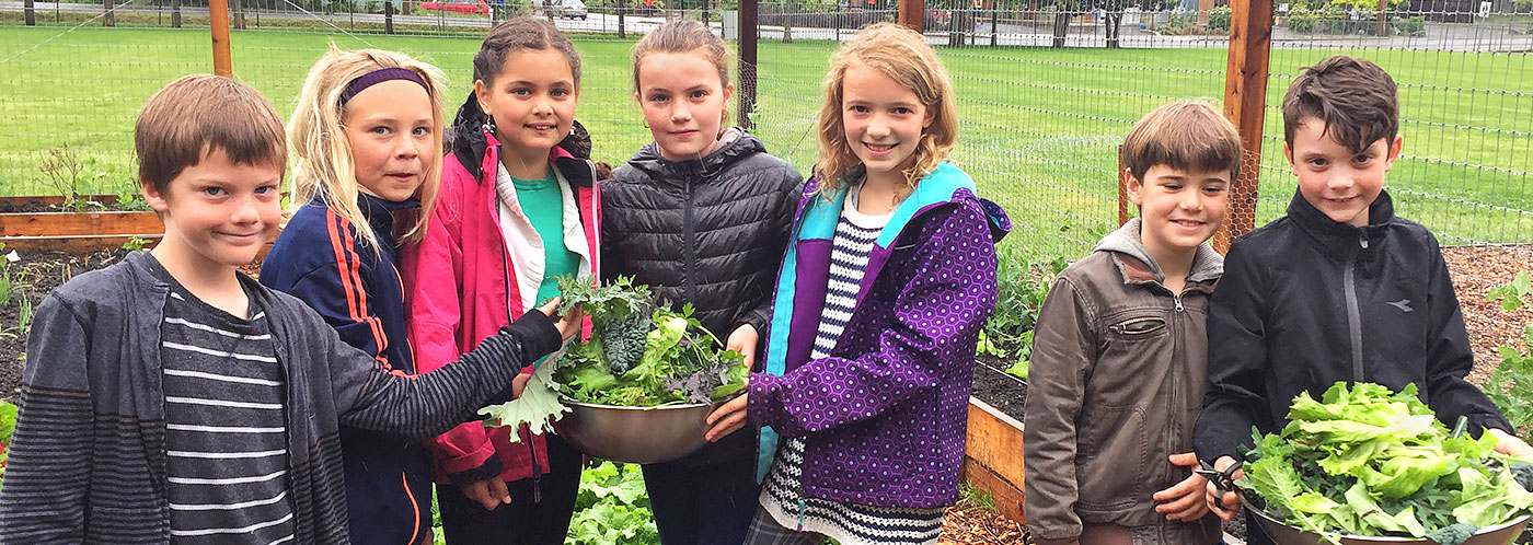 Rich Learning Harvested from Gulf Islands School Gardens